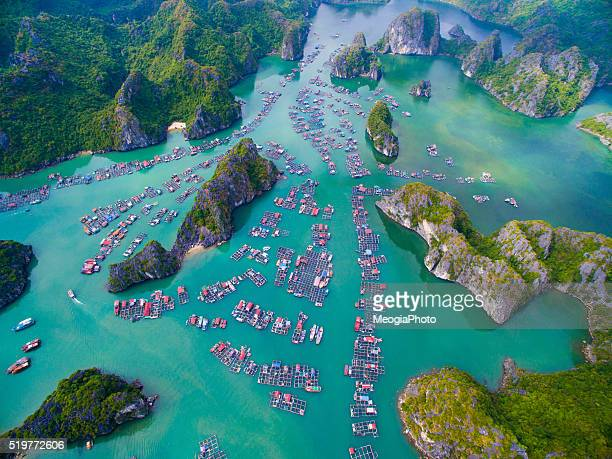 Cat Ba islands from high view