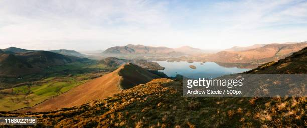 cat bells - february stock pictures, royalty-free photos & images