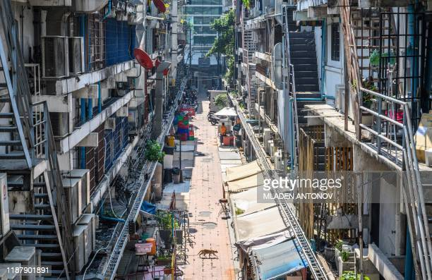Cat crosses an alley between apartment buildings covered with external air conditioners in Bangkok on December 11, 2019.