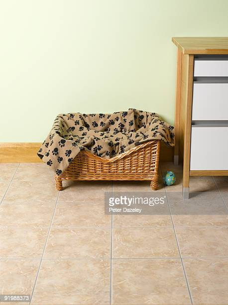 cat, dog bed - pet bed stock pictures, royalty-free photos & images