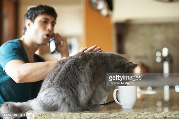 Cat drinking from coffee cup while young man talks on cell phone