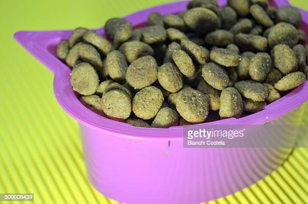 Cat food in a bowl-shaped head kitten