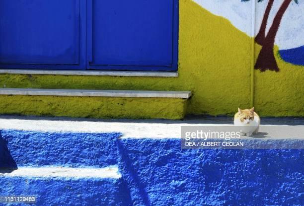 Cat in front of a traditional Agia Kiriaki house Pelion peninsula Greece