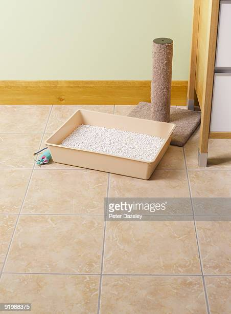 cat litter tray. - litter box stock photos and pictures