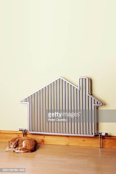Cat lying next to house-shaped radiator