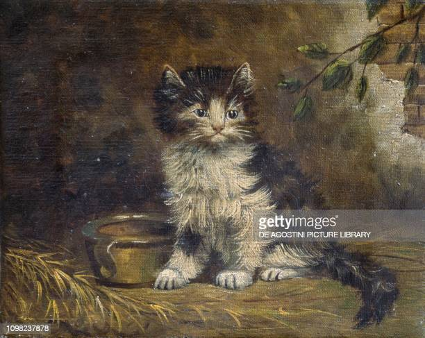 Cat oil on canvas France 20th century