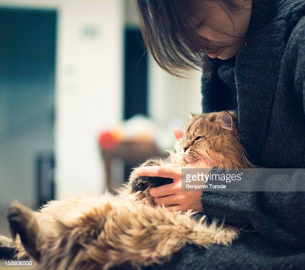 Cat on lap of owner
