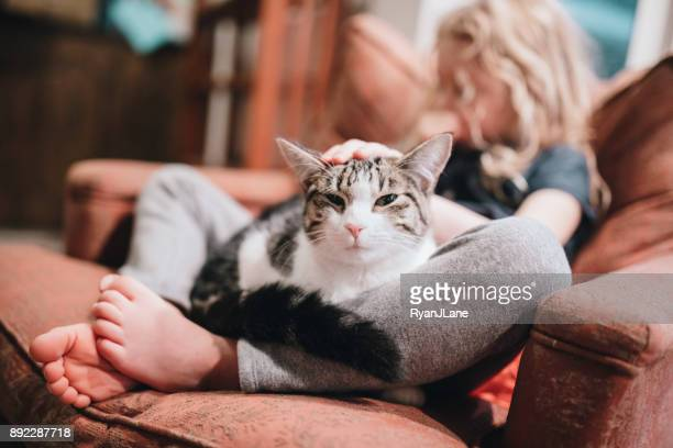 cat resting in lap of little girl on armchair - domestic cat stock pictures, royalty-free photos & images