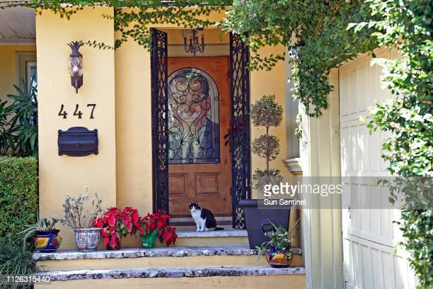 Cat sits sentry on the porch of the home of Roger Stone in Fort Lauderdale, Fla., on Wednesday, Feb. 20, 2019.