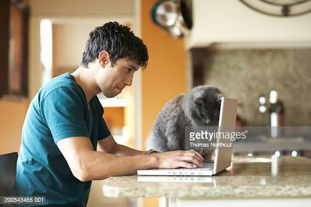 Katze sitzen neben Mann mit laptop in den domestic kitchen