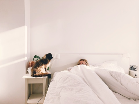 Cat Sitting Next To Woman In Bed - gettyimageskorea