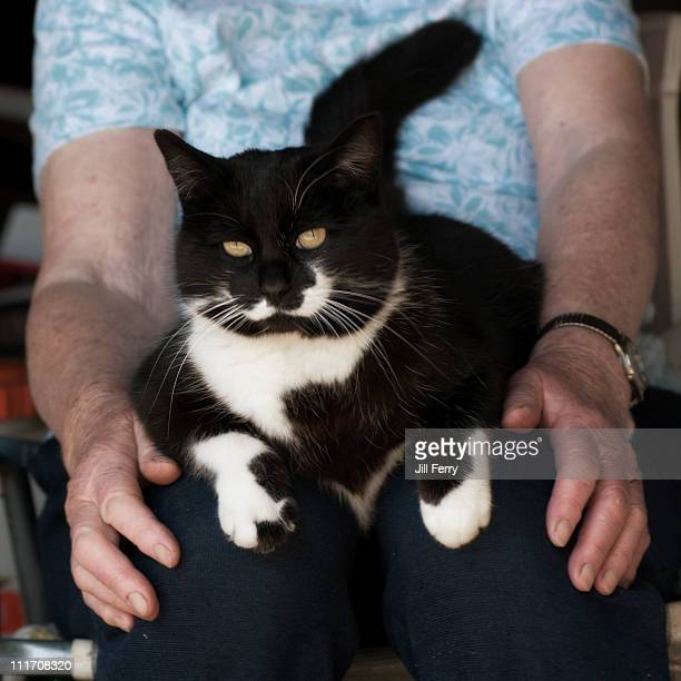 Cat sitting on an elderly woman's knees