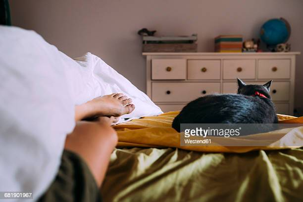 Cat sleeping on bed besides owner