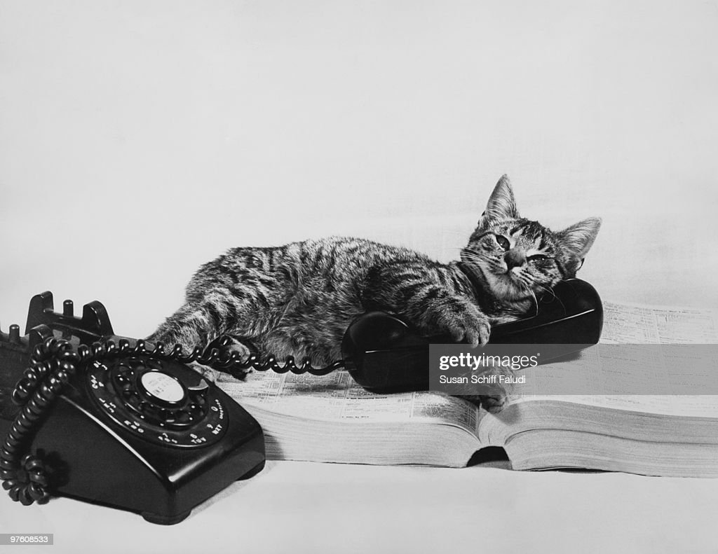 A cat sprawls on the telephone directory with a receiver in its paws, circa 1960.