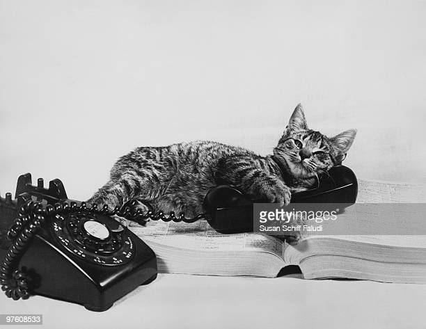 A cat sprawls on the telephone directory with a receiver in its paws circa 1960