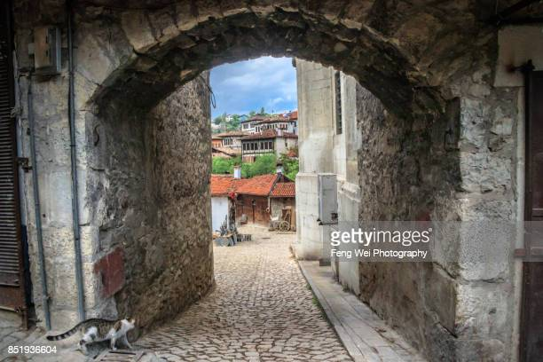 Cat Walking On Cobblestone Lane, Safranbolu, Turkey