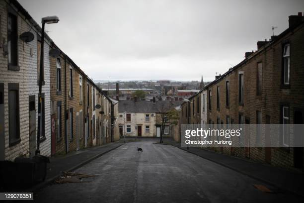 A cat walks across a delapidated street in Accrington Lancashire on October 12 2011 in Accrington United Kingdom The latest unemployment figures have...