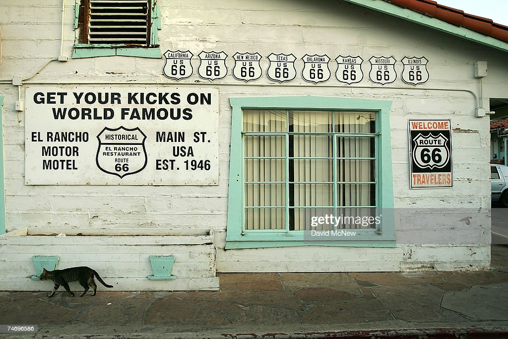 A cat walks past a Route 66 signs at the El Rancho Motel, once a major Route 66 landmark but now in a state of decline, on June 15, 2007 in Barstow, California. Route 66 opened in 1926 stretching from Chicago to Los Angeles and became a western migration route for people looking for work during the great depression of the 1930's or to escape the Dust Bowl disaster. Later it offered vacation getaways and driving adventures until 1985 when it was decommissioned as a federal highway. Due to neglect and commercial development Route 66, the first highway to connect the Midwest with the West Coast, has recently been added to the biennially compiled list of the world's most endangered landmarks by the World Monuments Fund and the National Trust for Historic Preservation's yearly list of the 11 most endangered historic places in America.