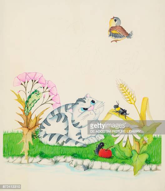 A cat watching a bird children's illustration drawing