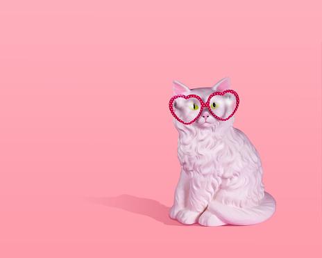 Cat wearing glasses - gettyimageskorea