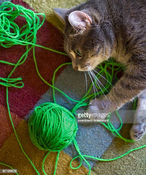 Cat with ball of green yarn