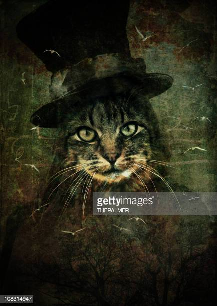 cat with magician hat