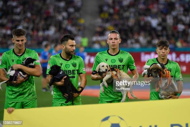Catalin Itu, Alexandru Rauta, Deniz Giafer and Costin Amzar hold dogs in action during the Romania Liga 1 game between FCSB and Dinamo Bucharest,...