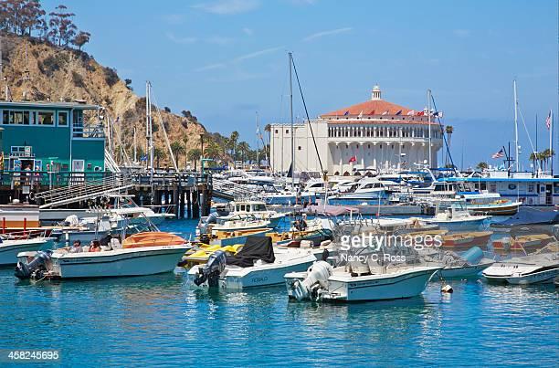 Catalina Island, Boats Moored in Avalon Harbor
