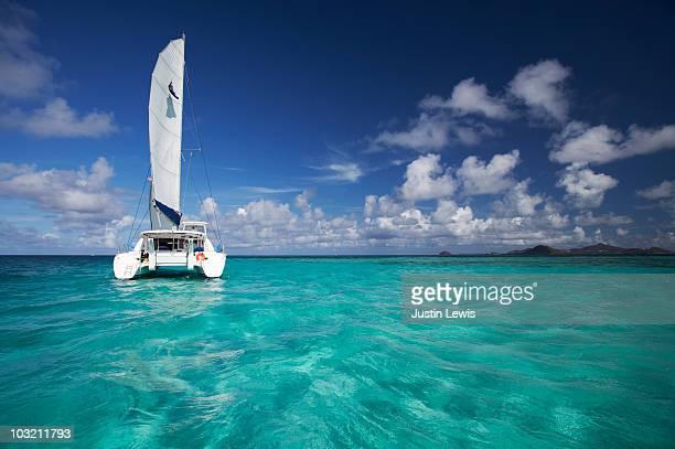 Catamaran boat on open water shot midday