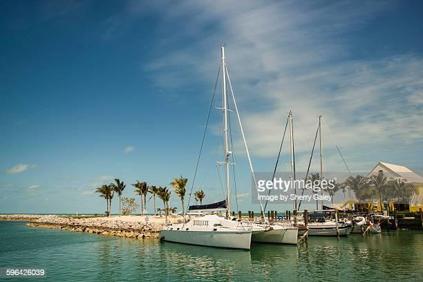 catamaran docked at old bahama bay - grand bahama stock photos and pictures