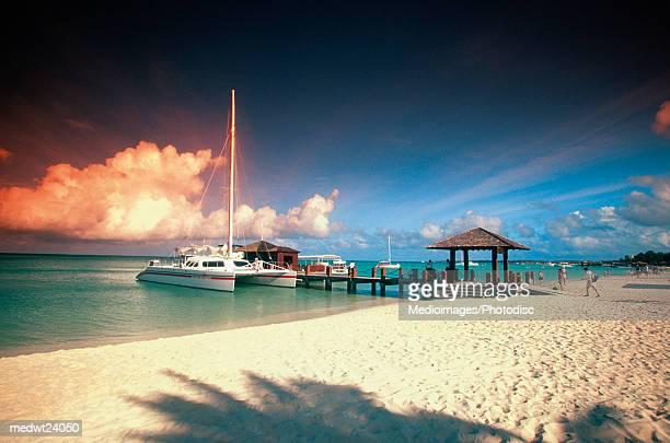 catamaran docked at pier at sunset on aruba, caribbean - catamaran stock photos and pictures