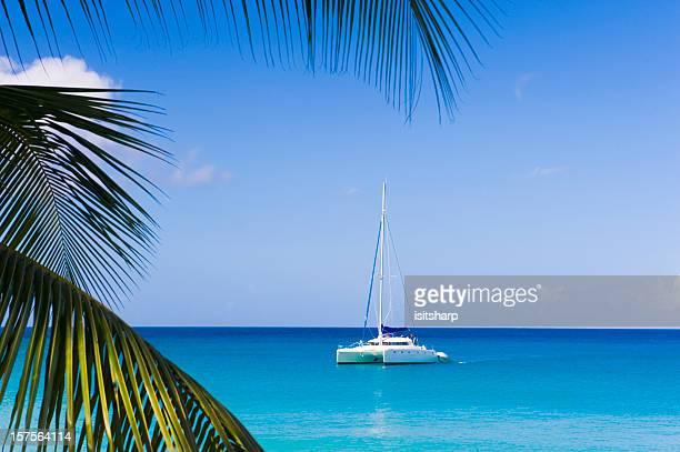 Catamaran in the Caribbean