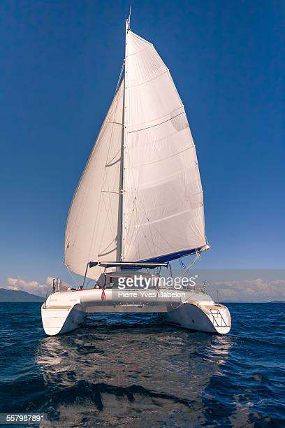 catamaran - catamaran stock photos and pictures