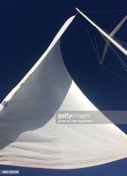 catamaran sail - catamaran stock photos and pictures