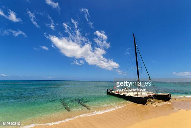 catamaran sailing boat in hawaii - catamaran sailing stock photos and pictures