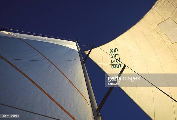 Catamaran Sails at Sunset
