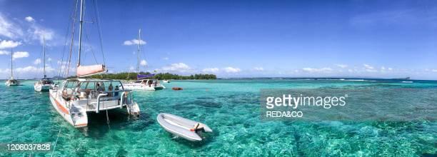 Catamarans anchored near a beautiful beach panoramic view