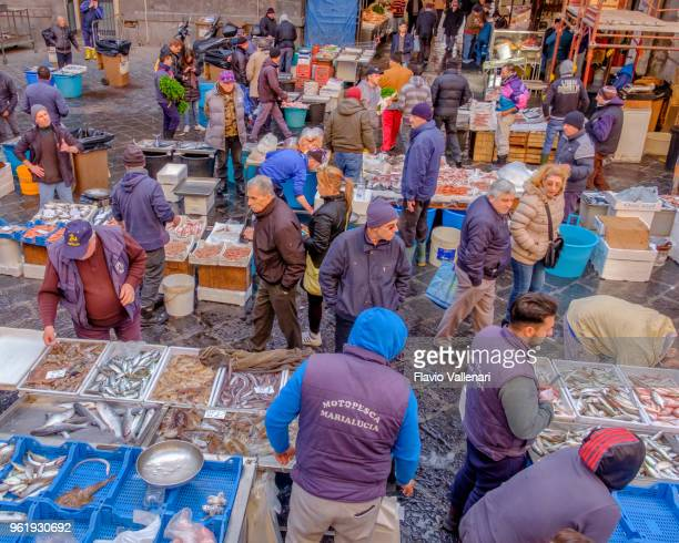 catania fish market, sicily, italy - catania stock photos and pictures