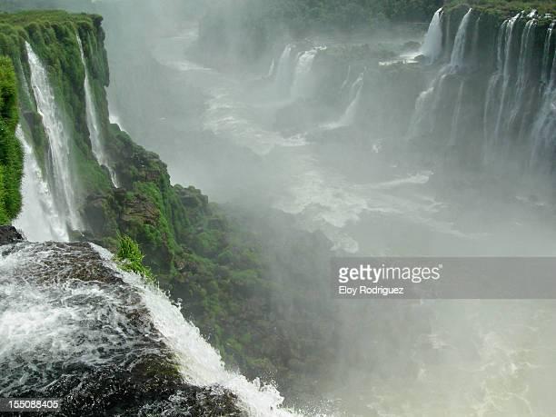 Cataratas de Iguazú 5