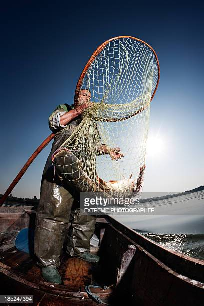 catch of the day - catfish stock photos and pictures