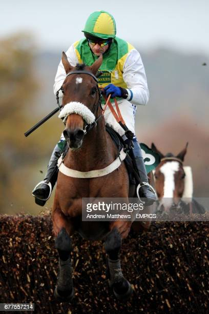 Catch The Rascal ridden by Andrew Thornton during the Jane Cheney Memorial Novices' Handicap Chase