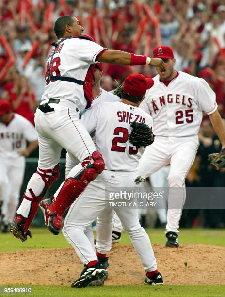 Catcher Benjie Molina of the Anaheim Angels leaps on teammate Scott Spiezio as Troy Glaus runs toward them from the dugout after the Angels defeating...