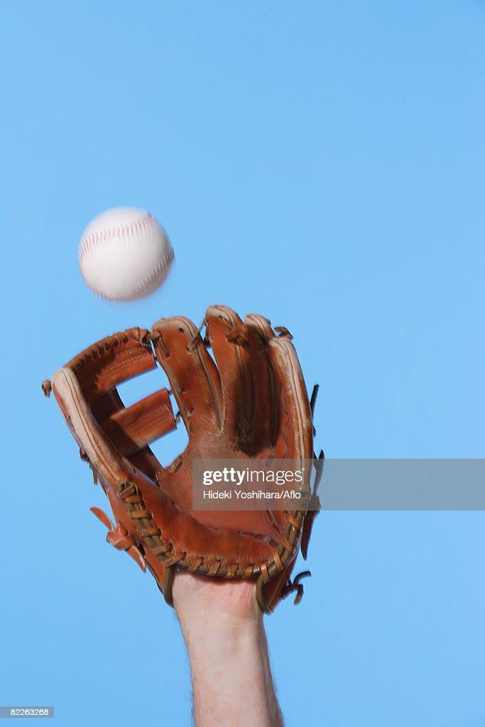 Catcher Catching a Baseball : Stock Photo