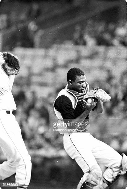Catcher Elrod Hendricks of the Baltimore Orioles juggles the foul pop fly during a game at Memorial Stadium in Baltimore, Maryland. Ellie Hendricks...