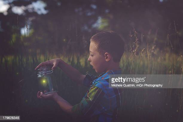 catching fireflies - fireflies stock pictures, royalty-free photos & images