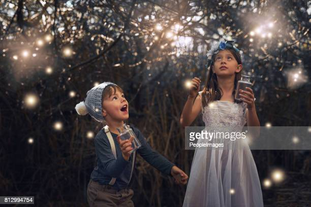 catching some magical creatures - firefly stock pictures, royalty-free photos & images