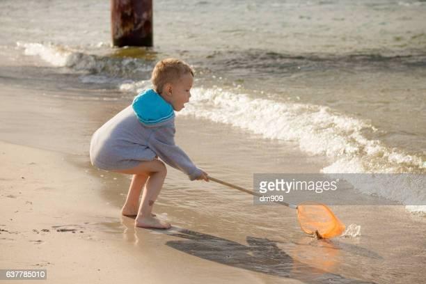 catching the jellyfish