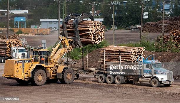 A Caterpillar Inc 988 Wheel Loader loads a truck with freshly cut for trees transport to the West Fraser Timber Co sawmill in Quesnel British...