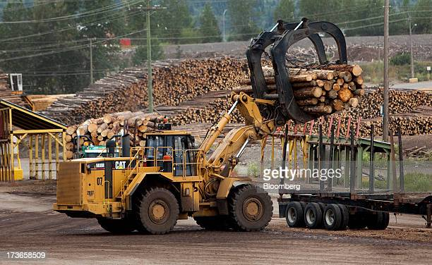 A Caterpillar Inc 988 Wheel Loader loads a truck with freshly cut trees for transport to the West Fraser Timber Co sawmill in Quesnel British...
