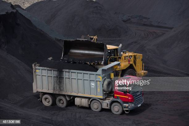 A Caterpillar Inc bulldozer drops a shovel of coking coal into a waiting truck in a storage dump at the Elga coal complex operated by OAO Mechel near...
